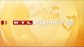 logo_punkt_12